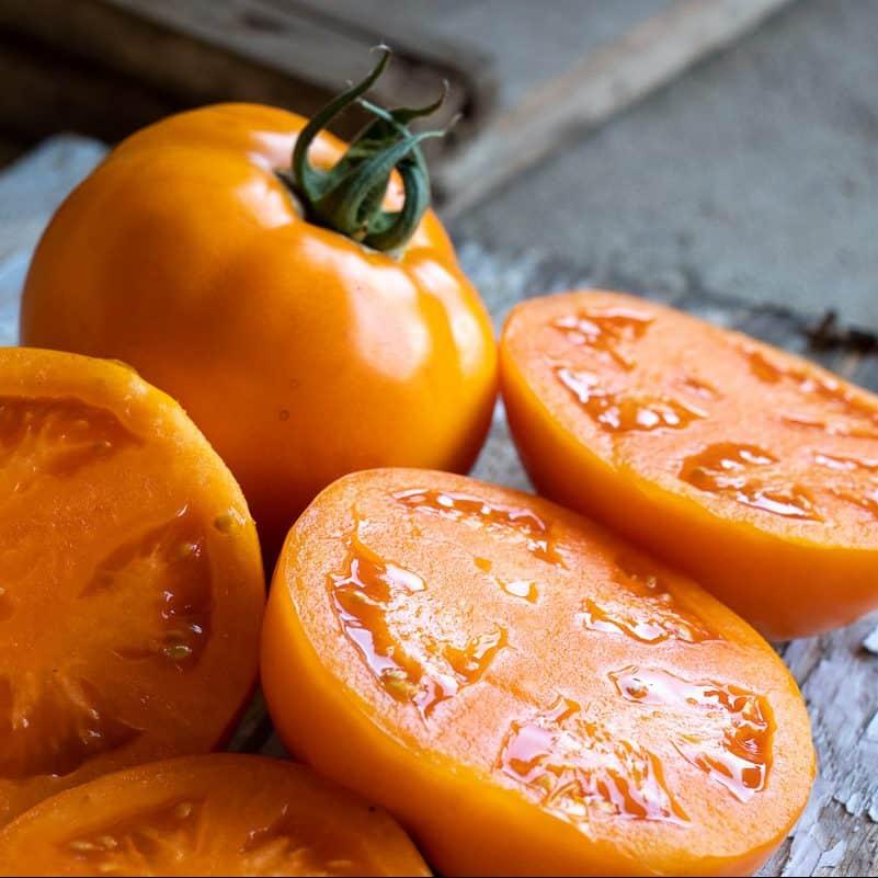 Tomato-Bendida-12