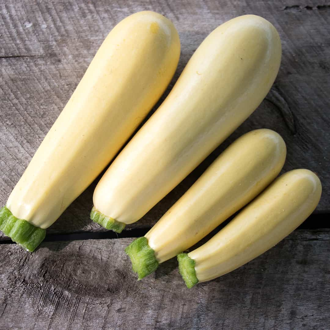 Chiffon is a long cylindrical summer squash with a delicious flavor